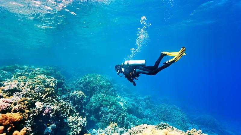 Choose Scuba Diving Shoes